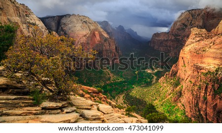 Angels Landing Summit View, Zion National Park, Utah