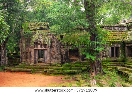 Angkor Wat - a giant Hindu temple complex in Cambodia, dedicated to Lord Vishnu. Trees in ruin Ta Prohm, part of Khmer temple complex, Asia. Siem Reap, Cambodia. - stock photo