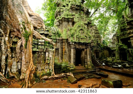 Angkor Wat - Ta Prohm temple, Cambodia - stock photo