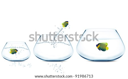 Anglefish jumping to Big bowl, Good Concept for new life, Big Opprtunity, Ambition and challenge concept. - stock photo