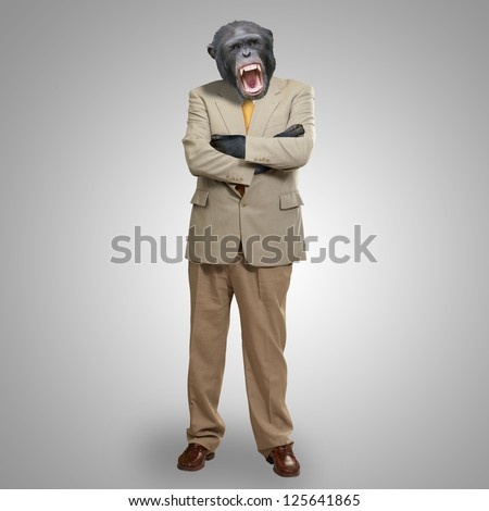 Angry Gorilla In Suit On Grey Background - stock photo