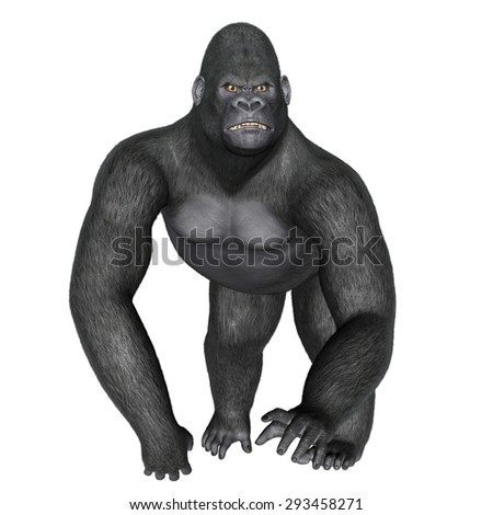 Angry gorilla walking isolated in white background - 3D render