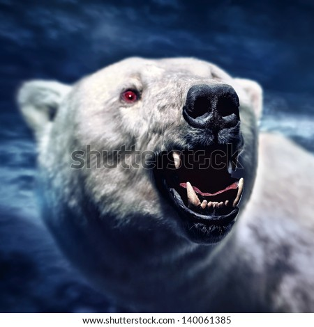 bear roar stock photos images amp pictures shutterstock