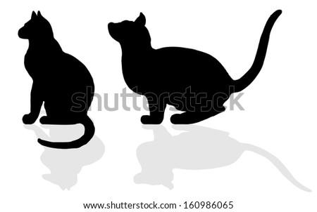animal - CAT - stock photo