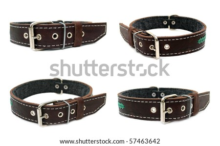 Animal collar set isolate on a white background - stock photo