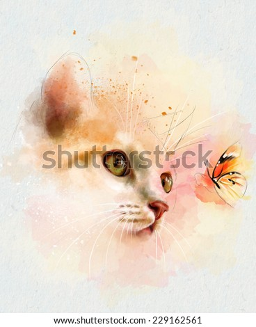 Animal collection: cat and butterfly - stock photo