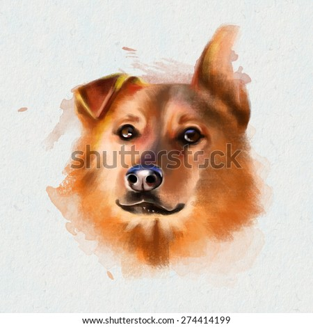 Animal collection: portrait of a beautiful, Sunny the dog, isolated on a white background, watercolor illustration - stock photo