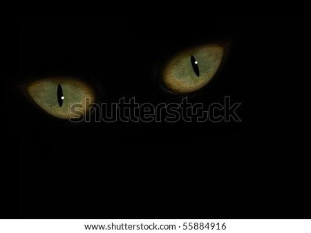 animal eyes in the dark - stock photo