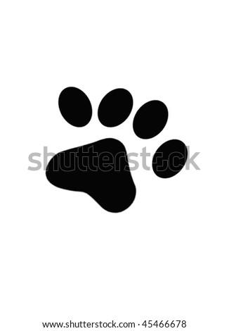 animal foot - stock photo