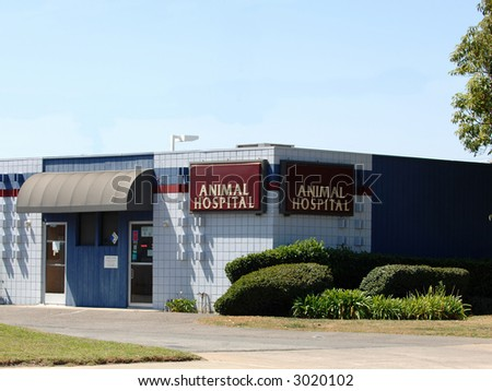 Animal Hospital - stock photo