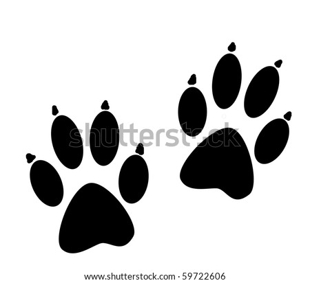 animal paws with claws - stock photo