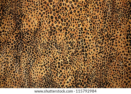 This background Animal Print photograph is very popular among the subscribers to Shutterstock!