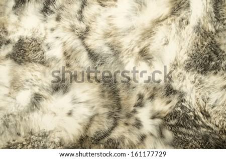 animal print Background Texture - stock photo