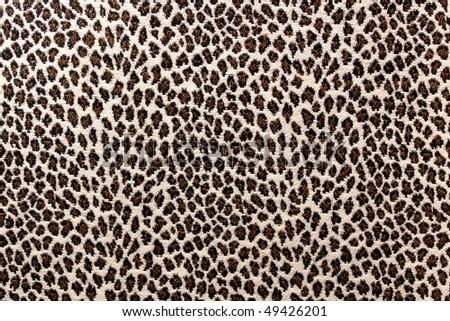 Animal prints - stock photo