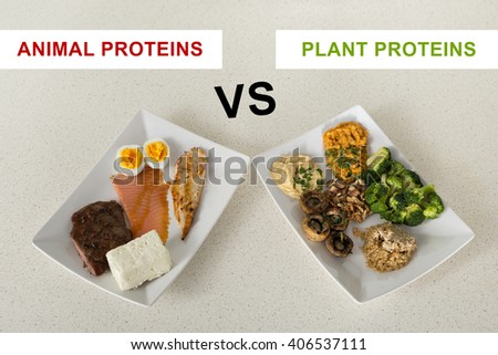animal versus plant proteins: one plate with beef, eggs, salmon, cheese and chicken grill and another with nuts, mushrooms, broccoli, lentil, hummus and quinoa