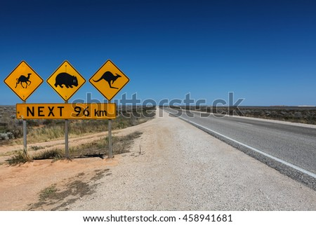 Animal warning signs along the Nullarbor Plain, Camels, Wombats and Kangaroos are often seen at the side of the highway or crossing the highway. South Australia.