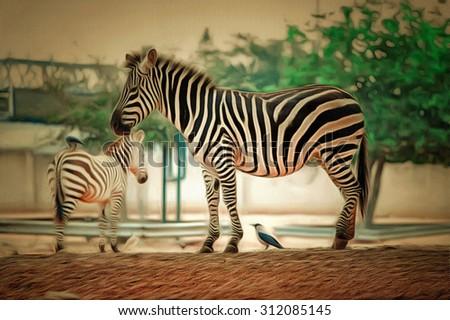 animal zebra drawing filter - stock photo