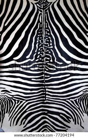 animal zebra skin black and white fur stripes leather background - stock photo