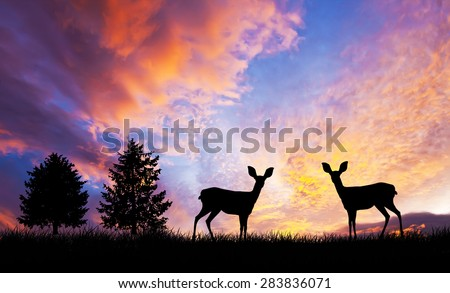 animals and nature - stock photo