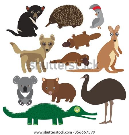 Animals Australia: Echidna Platypus ostrich Emu Tasmanian devil Cockatoo parrot Wombat crocodile kangaroo dingo.  - stock photo