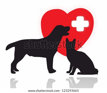 animals - first aid - stock photo