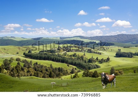 Animals grazing on the picturesque landscape background - stock photo