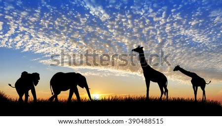 animals in the landscape - stock photo