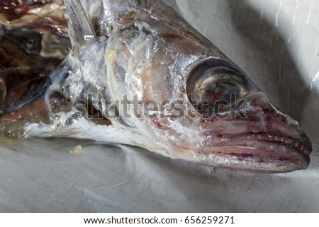 Can of worms stock images royalty free images vectors for Raw fish parasites