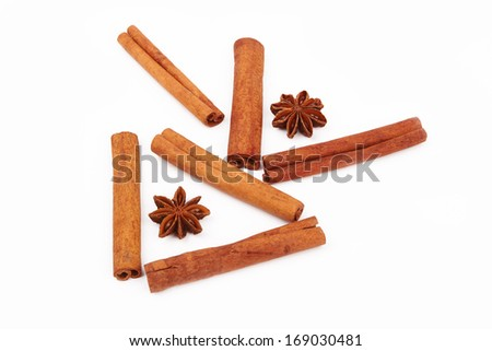 anise and cinnamon on a white background