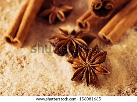 Anise and cinnamon on the cane sugar - stock photo