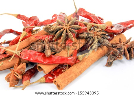Anise, cinamon and chili on the white background