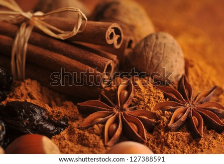 Anise, cinnamon and nuts - Christmas spices - stock photo