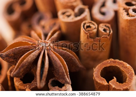 anise star and cinnamon sticks close up - stock photo