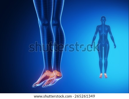 ANKLE blue x--ray bone scan - stock photo