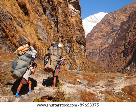 Annapurna, Nepal Porters carrying heavy load on his back. - stock photo