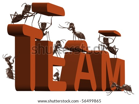 ant team building or team working 3D word created or under construction by ants teambuilding teamwork work together - stock photo
