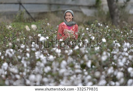 ANTALYA,TURKEY, 26 OCTOBER 2015. Syrian refugees families working in the cotton fields. - stock photo