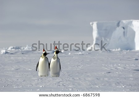 Antarctic Christmas - stock photo
