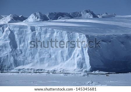 Antarctica Weddell Sea Riiser Larsen Ice Shelf Iceberg with Emperor Penguins - stock photo