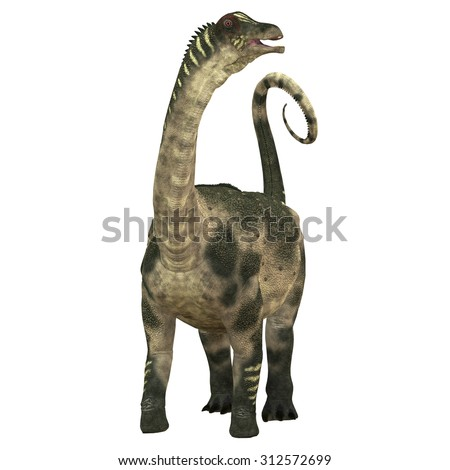 Antarctosaurus over White - Antarctosaurus was a sauropod herbivore dinosaur that lived during the Cretaceous Period in South America. - stock photo