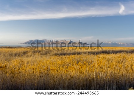 Antelope Island from the shore of the Great Salt Lake - stock photo