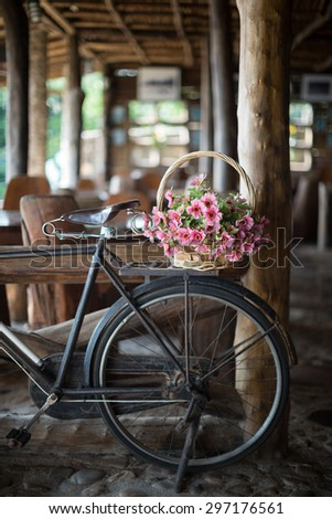 Antique bicycle with a flower basket parked inside log cabin