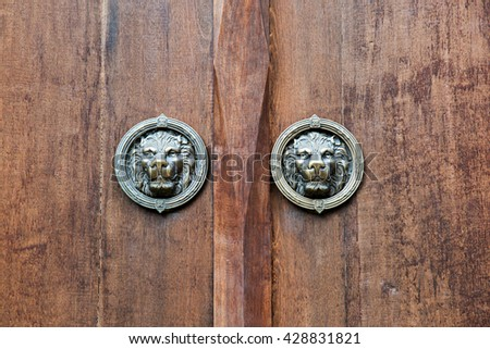 Antique brass lion's head on the old wooden door (detailed close-up shot)