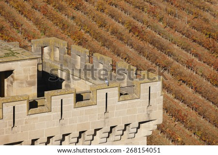 Antique castle battlement and vineyard in Olite, Navarra. Spain. Horizontal - stock photo