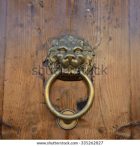 antique door knob with lionu0027s head on old wooden obsolete door rome italy