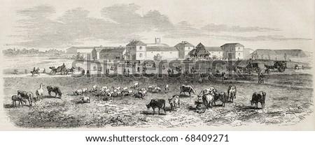 Antique illustration shows Imperial farm, in the Bois de Vincennes, Paris. Original, from drawing of Gaildrau, was published on L'Illustration, Journal Universel, Paris, 1860 - stock photo