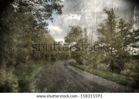 Antique photo of forest road - stock photo