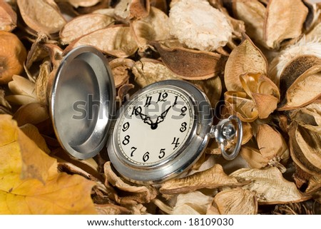 Antique pocket watch against the background of dried flowers and leaves - stock photo