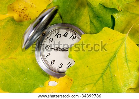 Antique pocket watch covered with yellow autumn leaves - stock photo