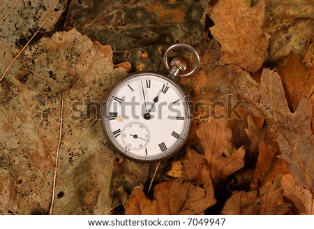 Antique pocket watch on dead leaves - stock photo